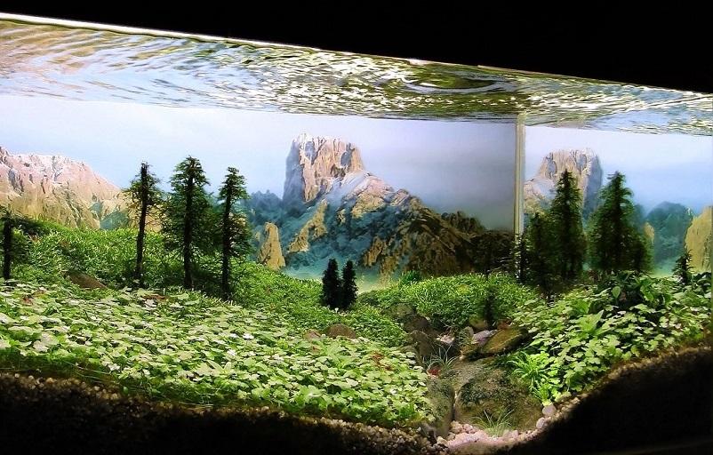 Благодаря пленке, наносимой на заднюю стенку, Ваш подводный дизайн будет выглядеть полностью завершенным